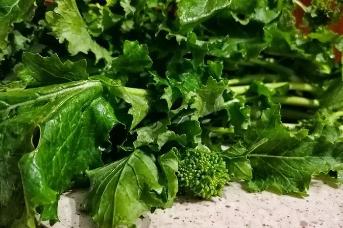 【フリアリエッリ】ナポリの人が大好きな冬野菜 -Friarielli-
